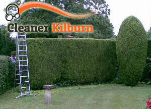 Hedge Maintenance KIlburn