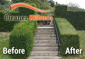 Before and After Hedge Trimmnig